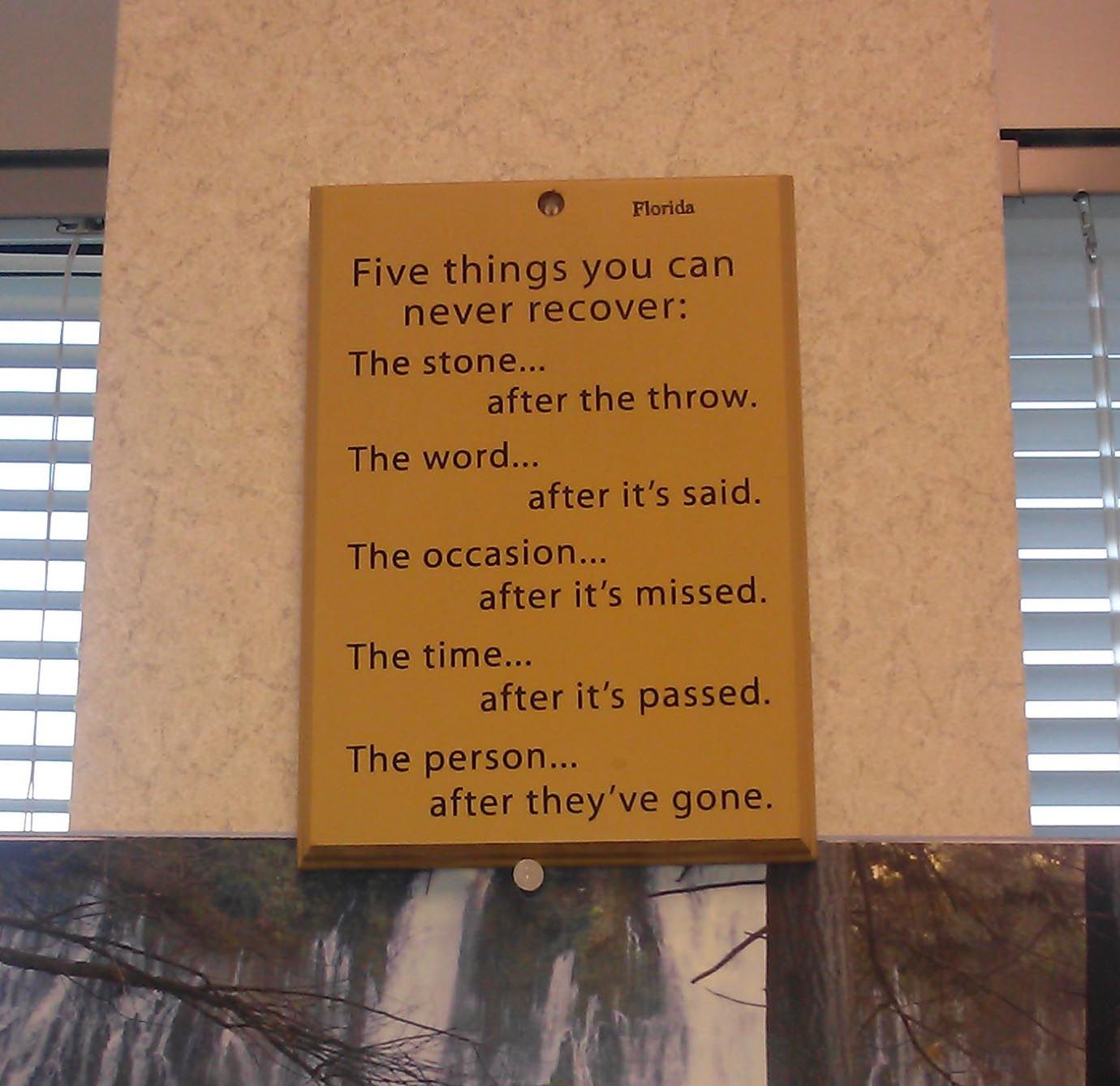 Wisdom From Florida