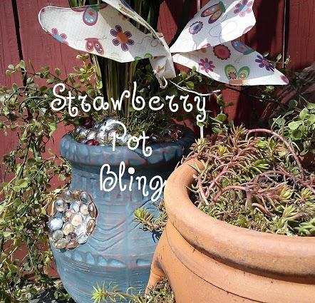 strawberry-pot-bling8