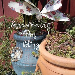 Strawberry Pot Bling - StowandTellU