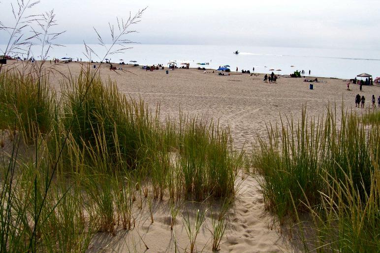 Sand and Sandwiches Day Trip to Warren Dunes Michigan