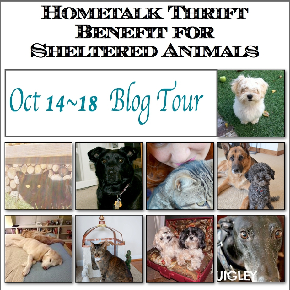 With a Lil' Help from Hometalk the Benefit for Animals Begins