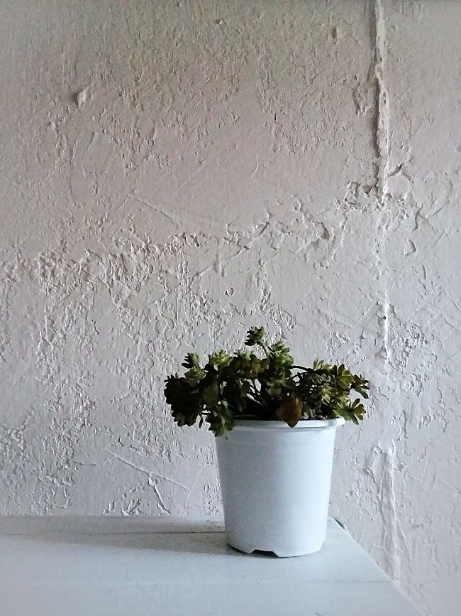 How To Easily Add Knockdown Texture To Concrete Basement Walls