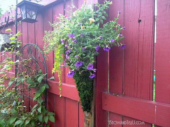 chicken-wire-planter-moss-flowers-pallet-wood