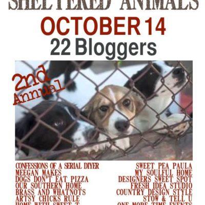 Thrift Shopping for Sheltered Animals