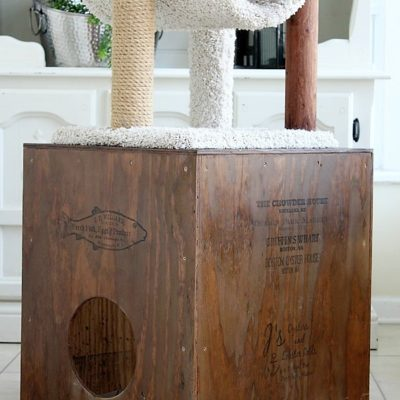 Rustic DIY Wooden Cat Cubby