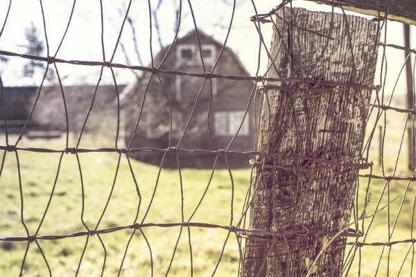 old-newspaper-farmhouse-adventure-http://stowandtellu