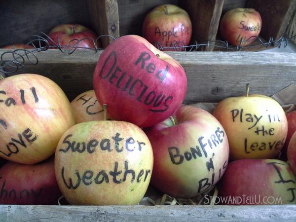 apples-edible-writer-https://stowandtellu.com
