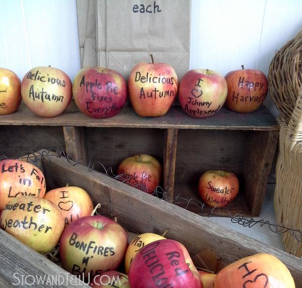 apples-fruit-with-edible-food-marker-https://stowandtellu.com