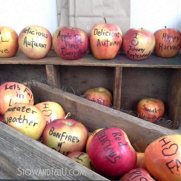 edible-fall-quotes-apples-https://stowandtellu.com