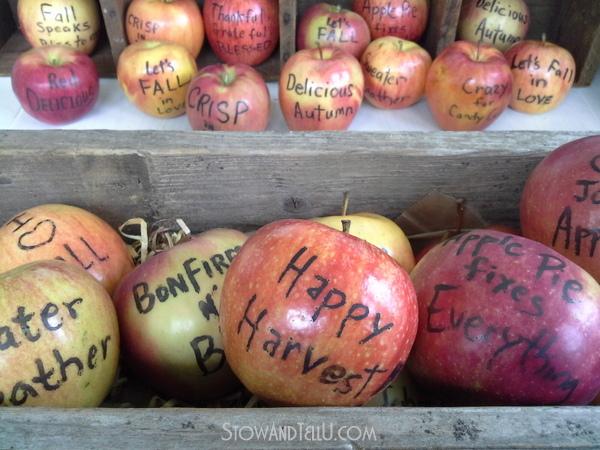 edible-food-marker-apples-https://stowandtellu.com