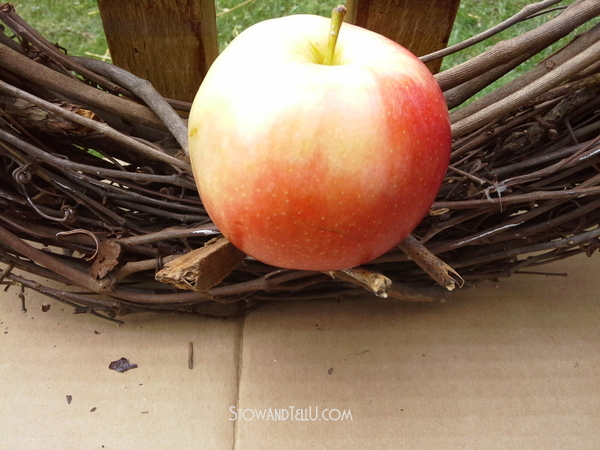 how-to-make-real-apple-wreath