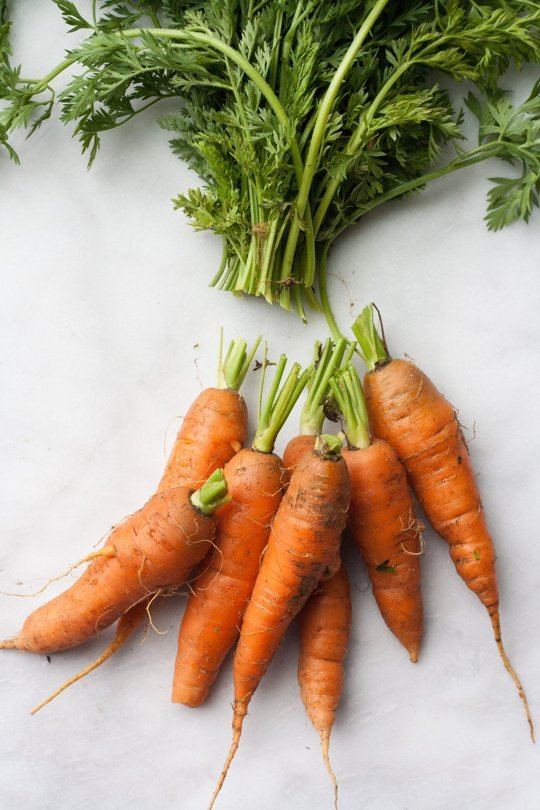 15 easy storage ideas for keeping vegetables edible longer - StowandTellU.com