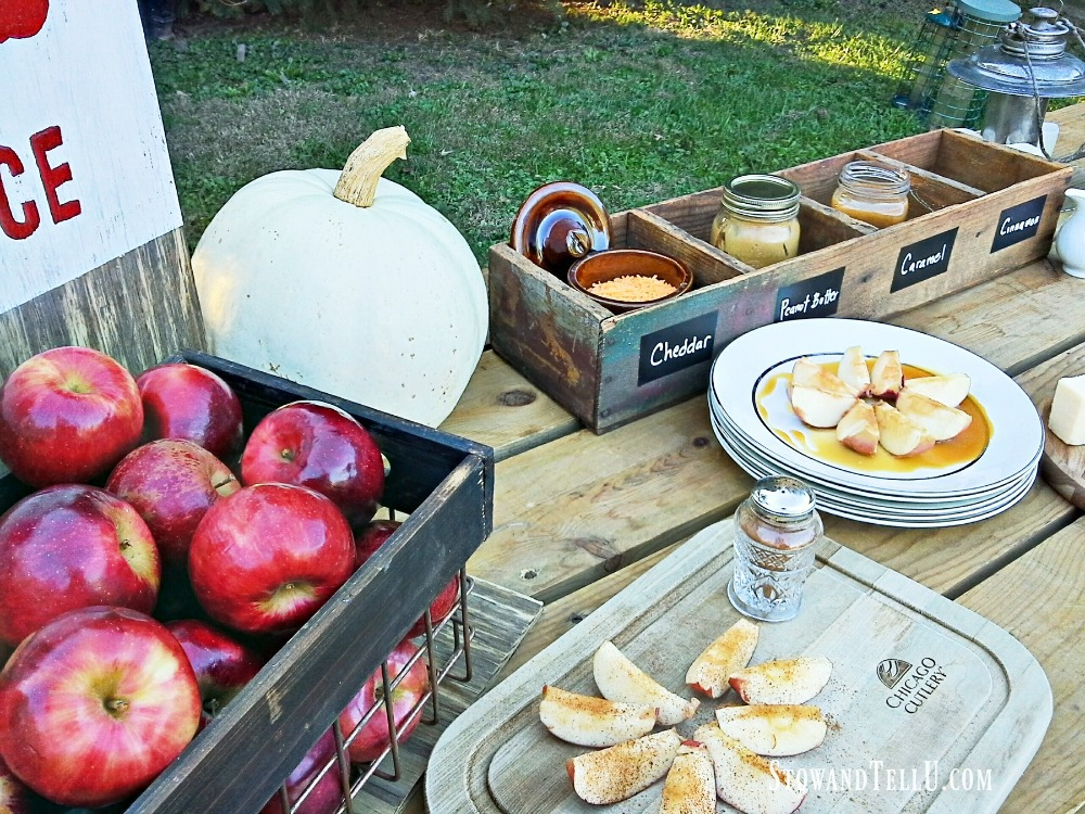 diy-fall-party-apple-bar|stowandtellu