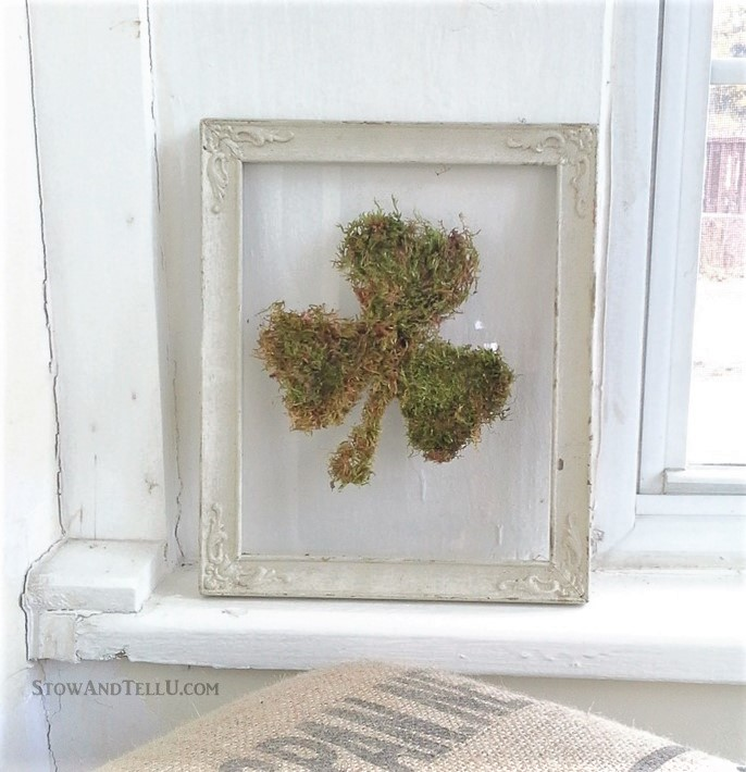 10 Best diy reused items - floating glass framed moss shamrock   StowandTellU.com