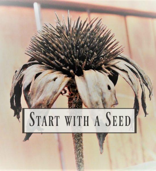 start-with-a-seed-growing-series-2-garden-planning   stowandtellu.com