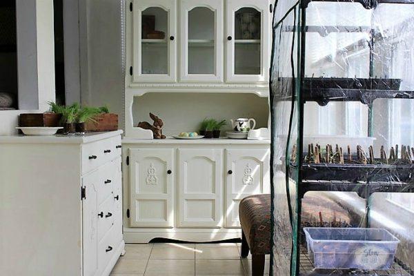 small-home-design-layout-sun-porch