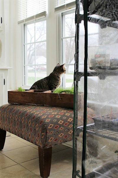Small-home-sun-porch-furniture-rearrange   stowandtellu