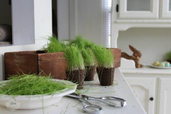 trimming-easter-grass-stowandtellu