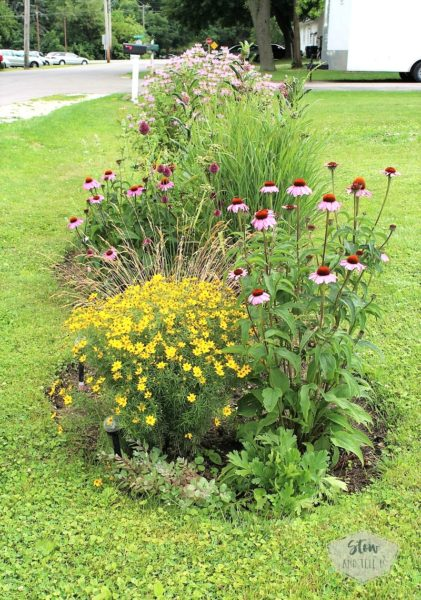 diy-native-prairie-flower-bed-stowandtellu
