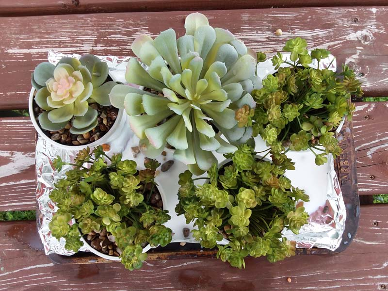 Potting Faux Succulents with DIY Stone Glue | stowandtellu.com