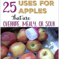 25 Uses for Apples that are mealy, bruised, sour or just extras | Stowandtellu.com