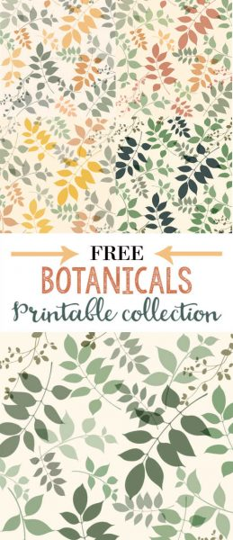 graphic about Free Printable Artwork to Frame titled Well prepared in the direction of Body: Absolutely free Botanical Printable in just 6 Shade Features