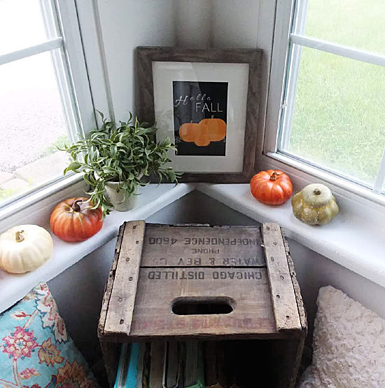plants and small pumpkins on windowsill
