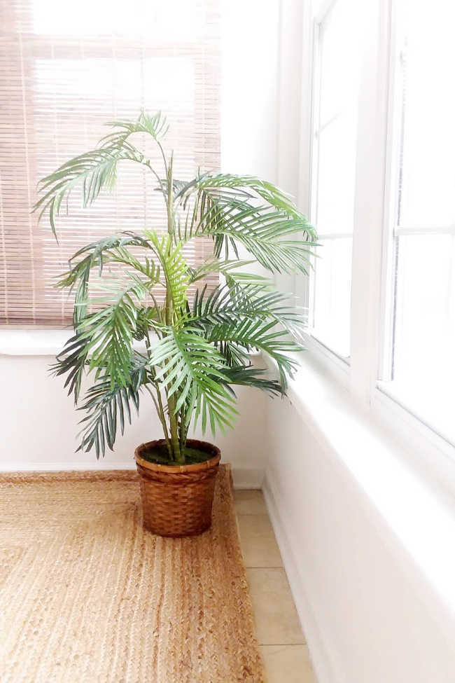 fake palm in planter