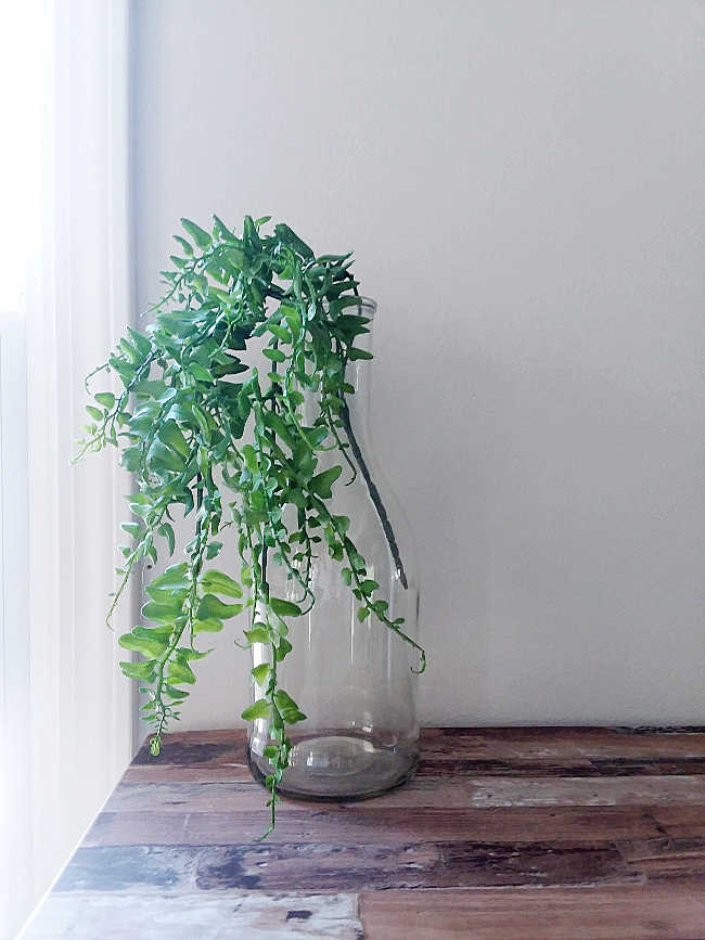 faux plant in glass vase
