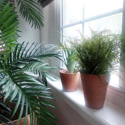 8 Cleaver Hacks That Will Make Faux Plants Look Realistic