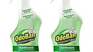 OdoBan Ready-to-Use Odor Eliminator and Disinfectant, Original Eucalyptus Scent, 2 Spray Bottles, 32oz