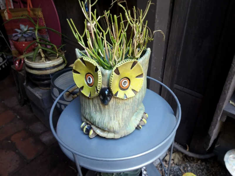 Handmade Retro Owl Planter Downtown Ojai