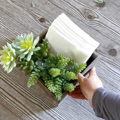 All-in-One DIY Napkin Holder and Faux Succulent Centerpiece