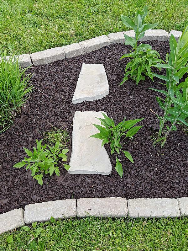 Precast flagstone stepping stones in garden bed