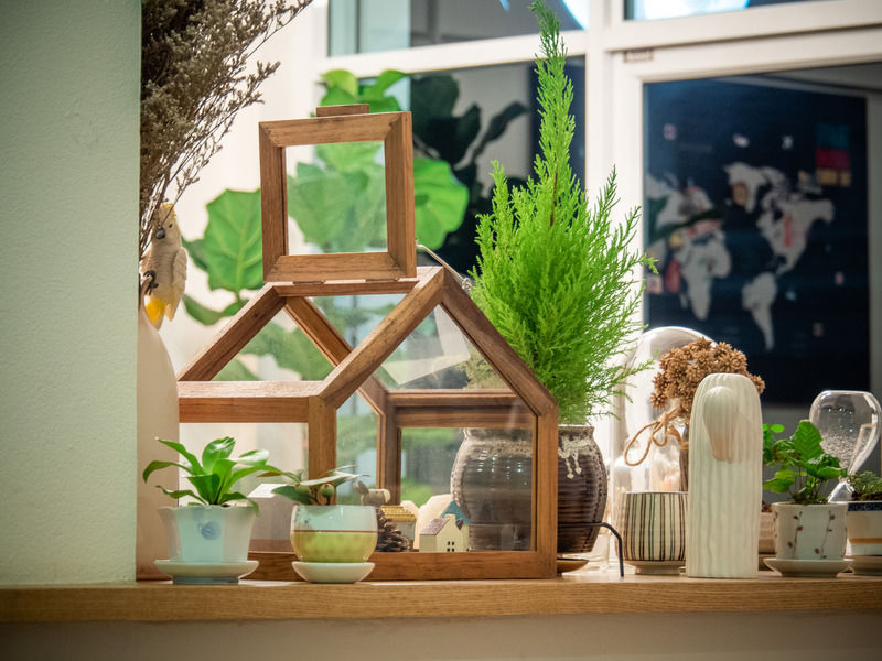 Recycled Picture Frame Terrarium