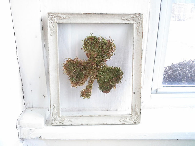 White frames with moss shamrock in floating glass